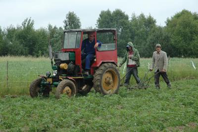 På åkern arbetar lantbrukarna.