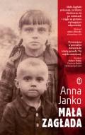 Lilla Förintelsen av Anna Janko är angelägen, men ännu inte översatt till svenska.