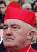 Kardinal Nycz oroar sig för enkönade partnerskap i Irland.  Foto: wikipedia.